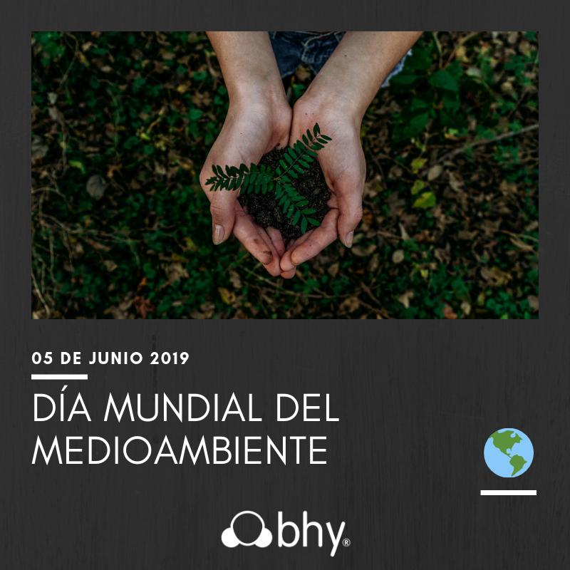 Día mundial del medioambiente BHY